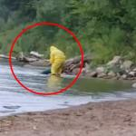 Captan el momento en el que sacan a una criatura con cola de pez de un lago