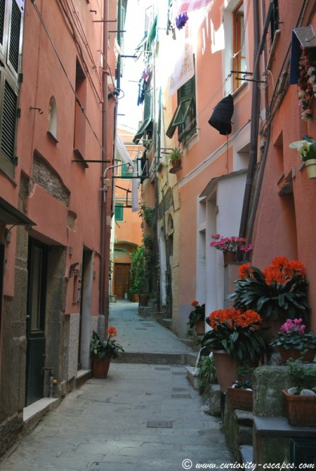 Typical street in Vernazza