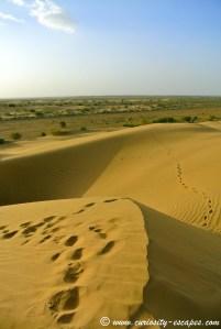 dunes de sable en Inde