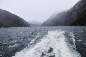 Contraste de brouillard sur le fjord
