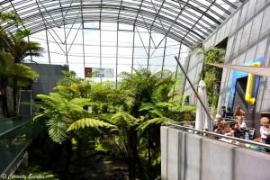 Serre tropicale au parc Vulcania