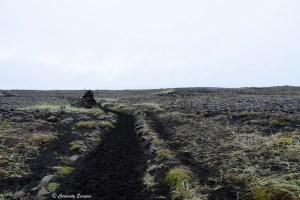 Randonnée à travers les champs de lave, Hafnaberg, Islande