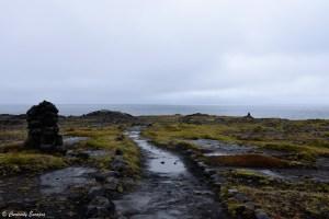 Falaises de Hafnaberg, sud-ouest de l'Islande