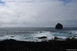 Île Eldey, péninsule de Reykjanes