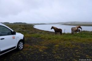 Spot de camping sauvage au sud de l'Islande