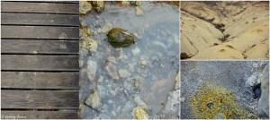 Textures et couleurs sur le site de Seltún