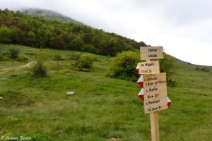 Randonnée dans le Parc National de Galičica, Macédoine