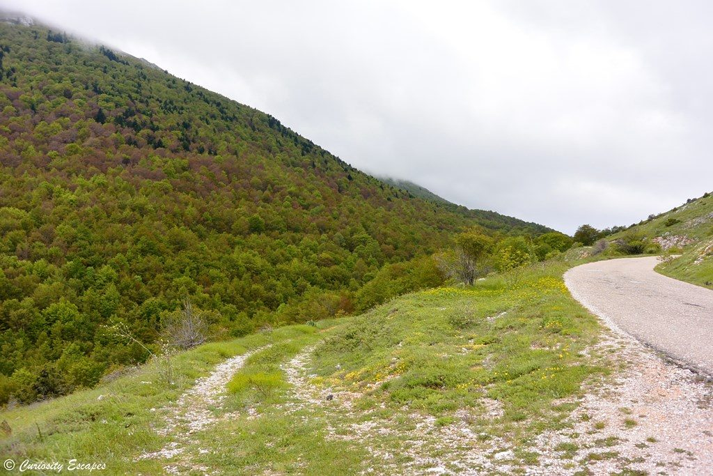Parc national de Galicica, Macédoine