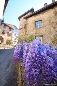 Maison fleurie de Saint Antoine l'Abbaye