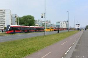 Tramways à l'arrêt pendant le marathon de Belgrade