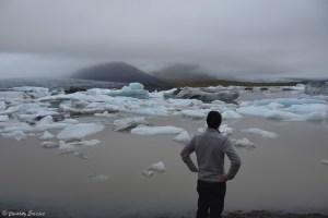 Icebergs à la dérive à Fjallsarlon