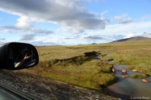 Paysage ensoleillé en Islande