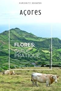 Guide pratique pour l'île de Flores aux Açores