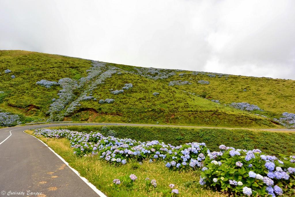 Routes fleuries de l'île de Flores, Açores