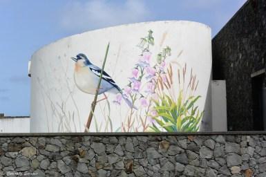 Street art à Santa Cruz das Flores, Açores