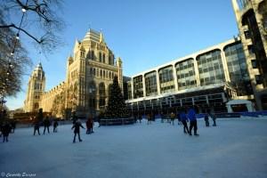 Patinoire du musée d'histoire naturelle de Londres