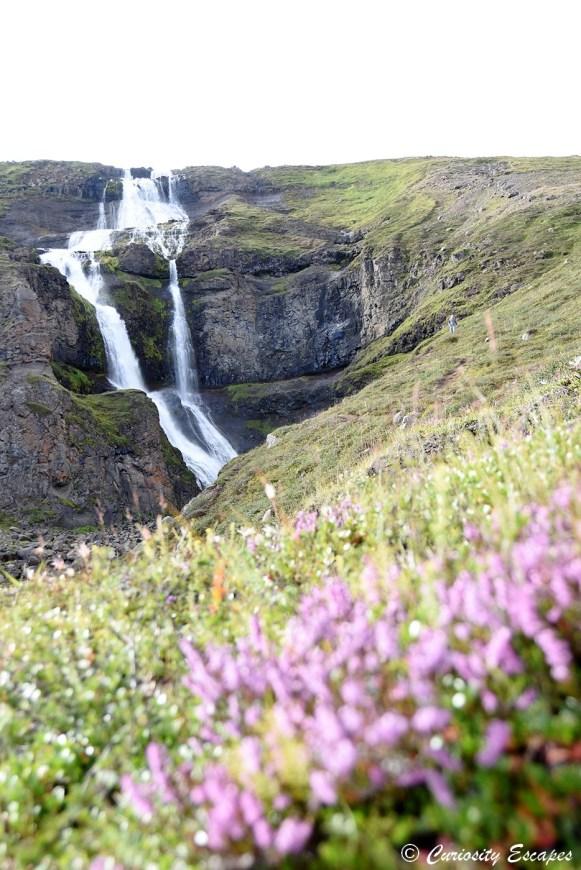Cascade de Rjukandi dans une vallée fleurie, Islande