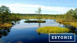 Articles de blog sur l'Estonie