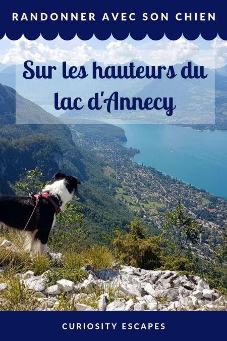 Randonner avec chien au lac d'Annecy
