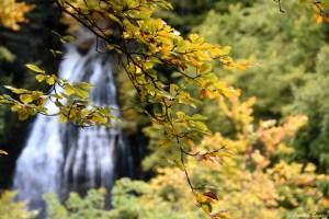 Cascade de la pisse du Guiers, Chartreuse