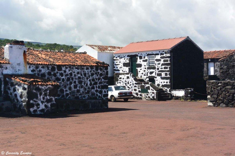 Village de Cachorro sur Pico, Açores