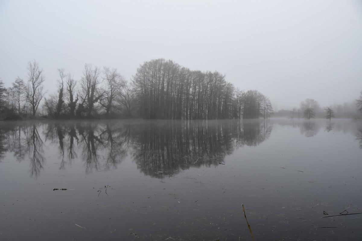 Pond boulieu no inverno baixo a néboa