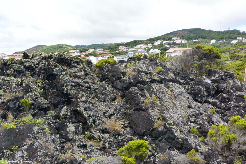 Randonnée sur de la lave aux Açores, île de Pico