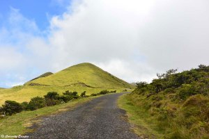 Les routes de l'île de Pico, Açores