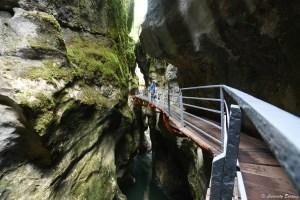 Passerelles fixées au canyon des gorges du Fier, Haute-Savoie