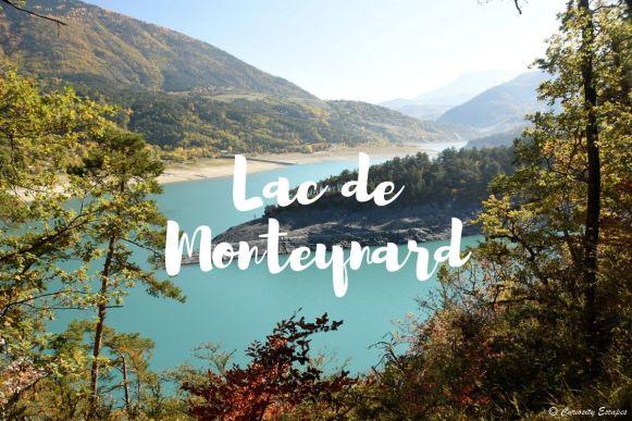Les passerelles du lac de Monteynard