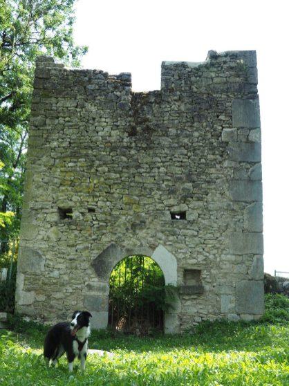 Ruines médiévales de Quirieu en Isère