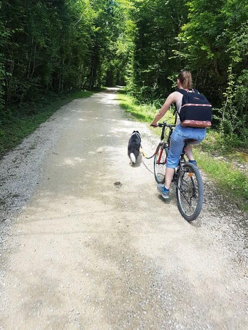 Voie verte en nord Isère avec son chien