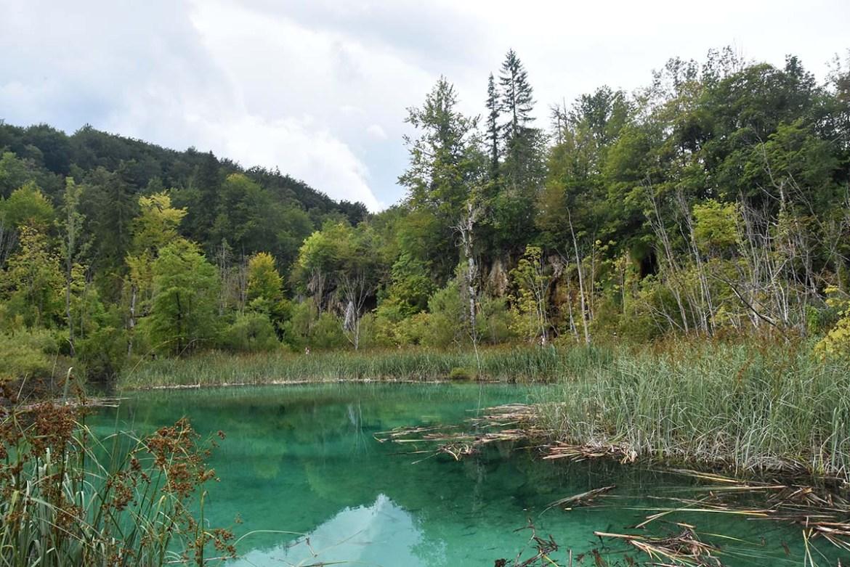 Lac turquoise du parc de Plitvice en Croatie