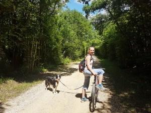 Voie cyclable en pleine forêt en Isère