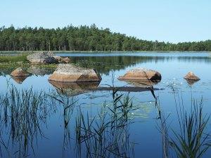 Le parc national d'Asnen dans le sud de la Suède