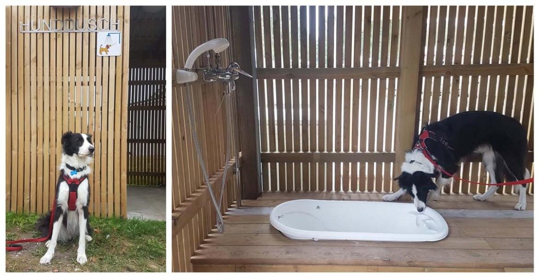 Douche pour chiens dans un camping suédois