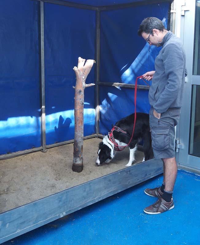 Toilettes pour chien sur le ferry pour la Suède