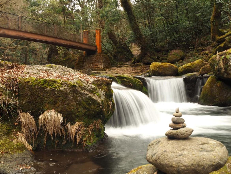 Cascade dans les gorges de Kikuchi, Japon