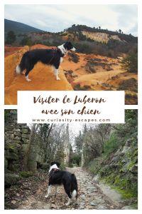 Visiter le Luberon avec son chien