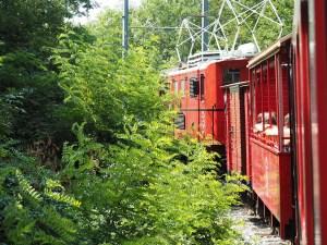 Parcours en forêt du petit train de La Mure