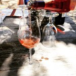 Quivera vineyard rose