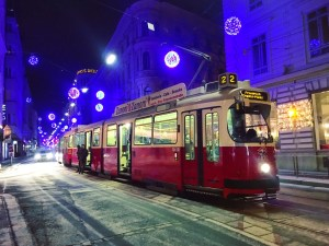 what to do in vienna in january