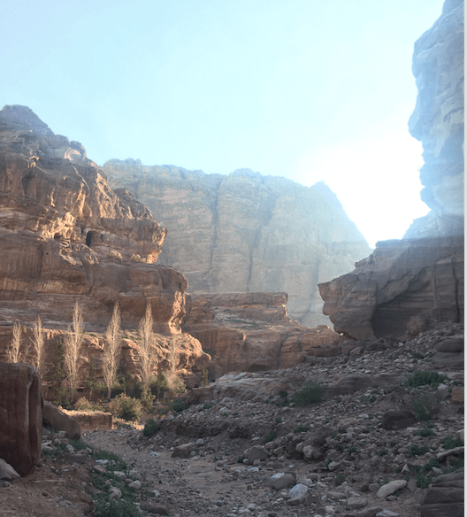 best time of day to visit petra