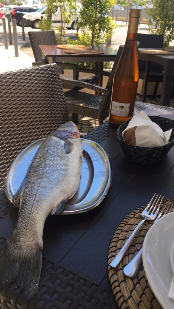 fish in southern portugal