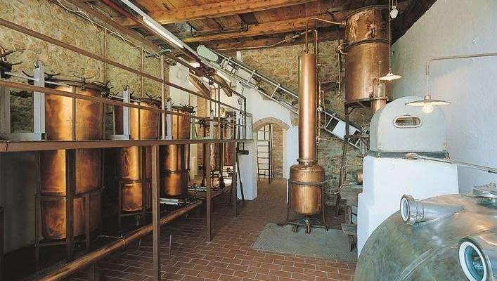 Distilleria Schiavo 1887