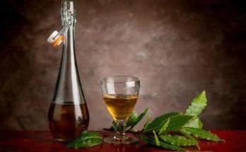 liquore con bacche di alloro preparazione e ricetta