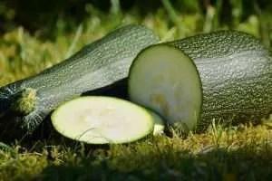 Zucchine farcite ricetta