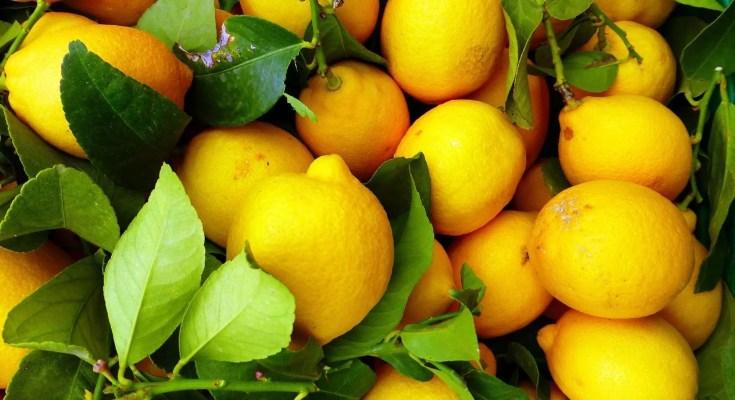 Flip al limone cocktail ricetta