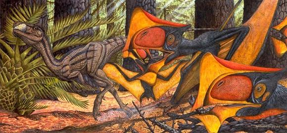 Tupandactylus-imperator[1]