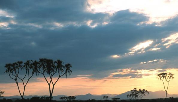 Céu brando na África.